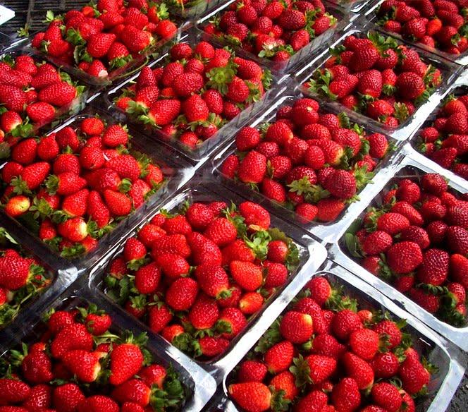 Stánkový prodej jahod